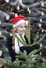 Gesetz bedroht Weihnachtsbaumerzeuger