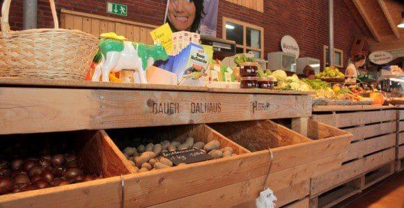 Dalhaus-Bild2-580x299