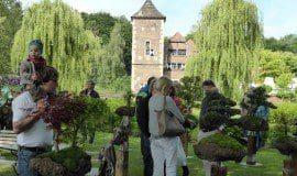 Feste in Gärten und Parks 2021 - was findet statt?