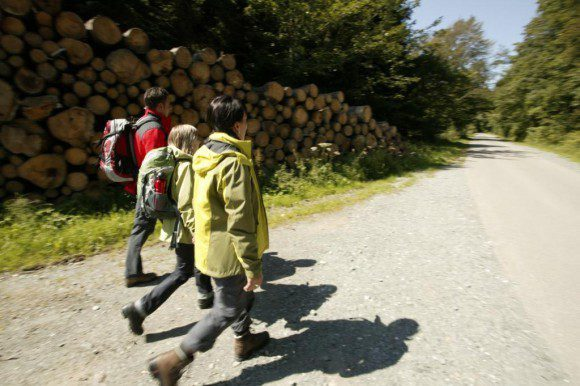 Bei geführten Halbtagestouren lernen Wanderer ab 2. Mai die Eigenheiten der Landschaft und die individuellen Besonderheiten der Ortschaften kennen.  - Fotos: Ferienwelt Winterberg