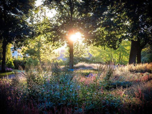 Der Oudolf-Garten im Gräflichen Park Bad Driburg - Foto: H. Hamann