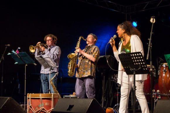Beim Musikfestival Trompetenbaum und Geigenfeige tritt auch die Gruppe