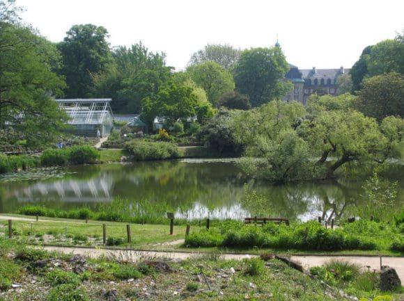 Einblicke in vielseitige Pflanzenwelten bietet der Botanische Garten Münster. Foto: LWL/Woltering