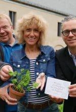 Kloster Dalheim: Hereinspaziert ins Gartenglück