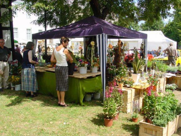 Auch Blumen und Stauden kann man auf dem Markt erwerben