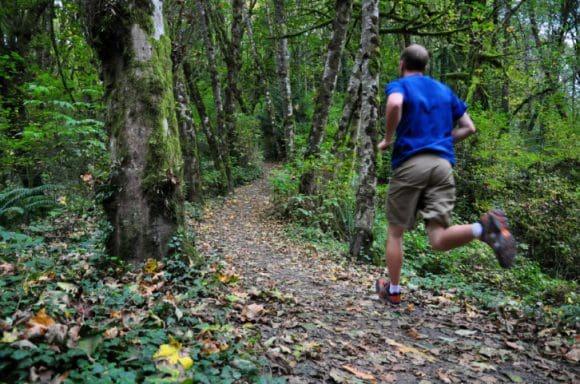 Die erlebnisreichen Strecken mit ihren natürlichen Hindernissen fördern nicht nur die Freude am Laufen und die Kondition, sondern auch die Konzentration. - Foto: Ferienwelt Winterberg