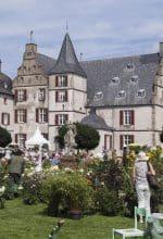 Gartenflair auf Schloss Bodelschwingh