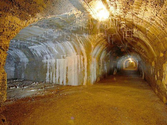 Auch alter Luftschutzbunker können bei der Exkursion besichtigt werden.