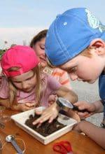 Freilichtmuseum: Flaniermeile für Genießer