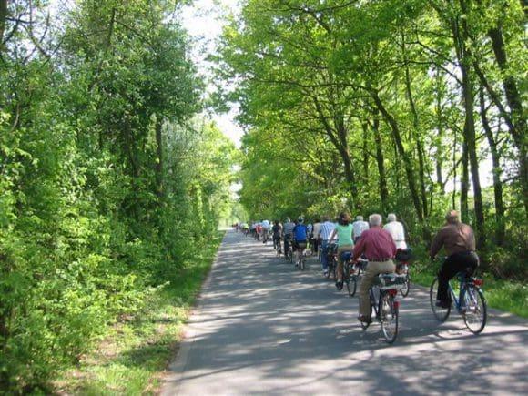 """Die Fahrradtour """"Rund um Waldliesborn"""" ist rund 20 Kilometer lang, dauert etwa drei Stunden und ist auch für Familien geeignet."""
