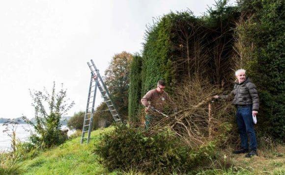 Landschaftsarchitekt Christoph Rammrath (rechts) und sein Mitarbeiter entfernen den geschädigten Eibenstamm und legen damit einen Blick ins Innere der massiven Hecke frei. Fotos: LWL / Hanna Neander