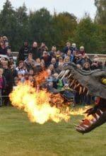 Rietberg: Drachenfest im Klimapark