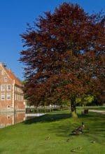 Havixbeck: Studienort für literarisches Schreiben