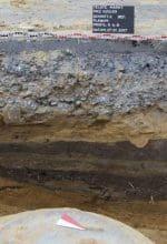 Ausgrabungen in Telgte und Warendorf