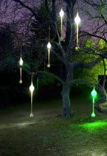 Essen: Funkelndes Leuchten im Grugapark
