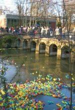 Lippstadt: Frühling mit allen Sinnen erleben