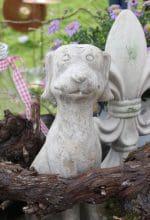 Jetzt gewinnen: Karten für Gartenfest Dalheim