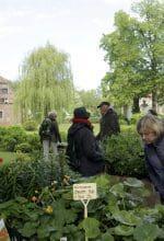 Gartenträume auf Burg Hülshoff