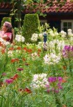 Gartenfest auf dem Landgut Rosenhaege