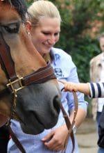 Aktions-Wochenende rund ums Pferd