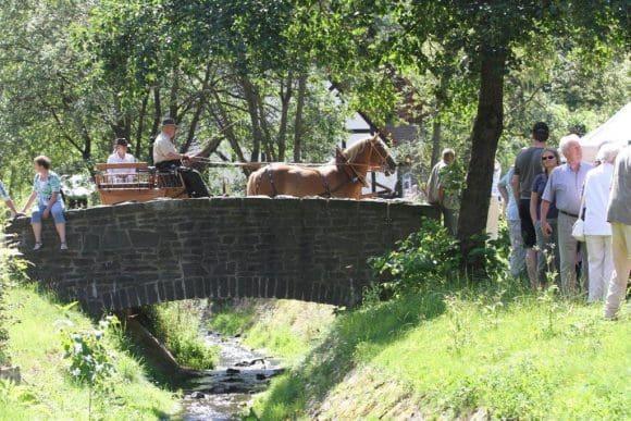 Freilichtmuseum Hagen Tag des Pferdes