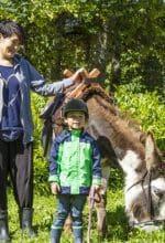 Ferienwelt: Eselwandern bis Ranger-Tour