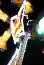 Action und Adrenalin auf Kanzlers Weide