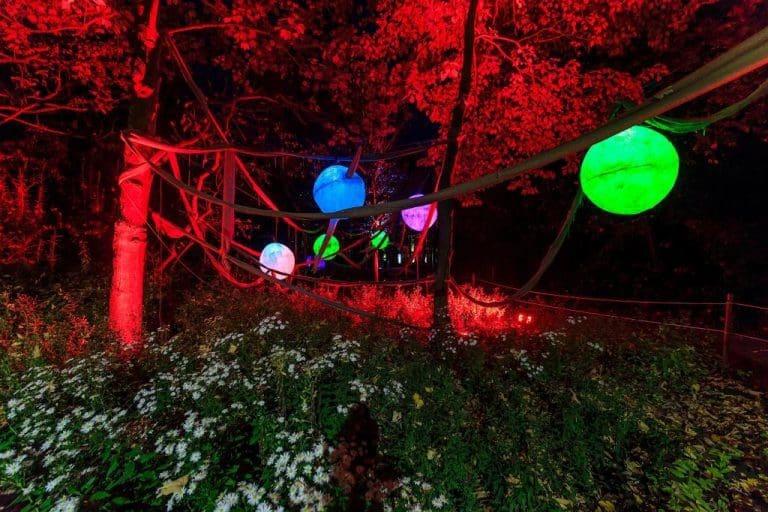 Dortmund: Winterleuchten im Westfalenpark