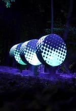 Lippstadt: Lichterführung durch die Nacht