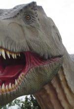 Abenteuerland jetzt mit Autokino und Dinosauriern