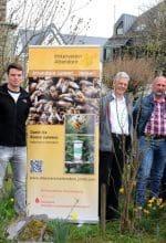 Bienen-Aktionstag: Attendorn summt