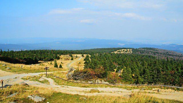 Urlaub am Harz: Quedlinburg und Umgebung erkunden