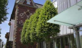Aktuelle Ausstellung im Kunstmuseum Ahlen