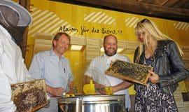 Detmold: Alarm für die Biene