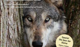 Westfalium Herbstausgabe: Ab 31.8. am Kiosk!