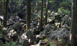 Steinreiches Westfalen