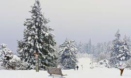 Wunderschön! Weihnachten im Sauerland