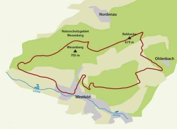 Winterwandern Sauerland