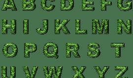 Kiepenkerl-Blog: Dresscode für die Rechtschreibung