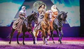 Die Pferdeflüsterer