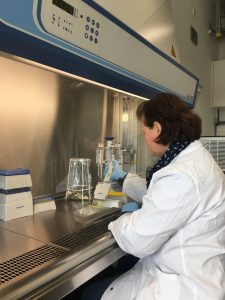 CiFlu ist nur der Anfang: Impfstoff-Herstellung mit Hilfe von Wimperntierchen soll auch bei Vakzinen gegen andere Krankheiten angwendet werden
