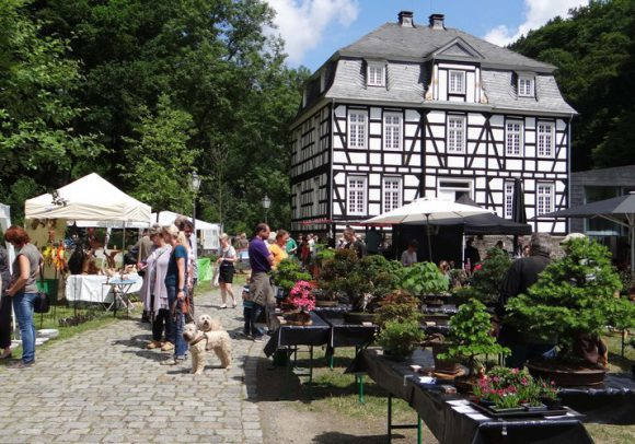 Hagen Garten