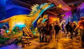 Münster: Dinosaurier hautnah erleben
