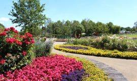 Buntes Blühen und Treiben in Rietberg