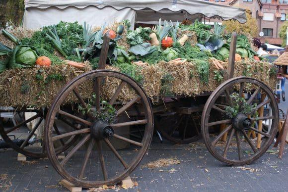 Herbstfeste NRW