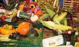 Landwirtschaft sichert Lebensmittelversorgung
