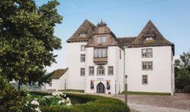 """Schloss Fürstenberg:Museum zeigt""""Im Dialog"""""""