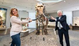 Naturmuseum Dortmund öffnet nach Renovierung