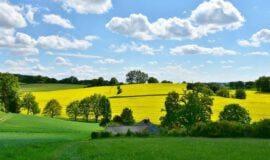 Westfälische Heimatbund sucht frische Ideen