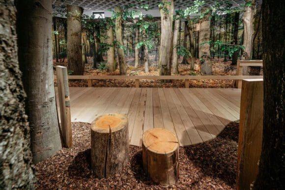 Wald im Museum